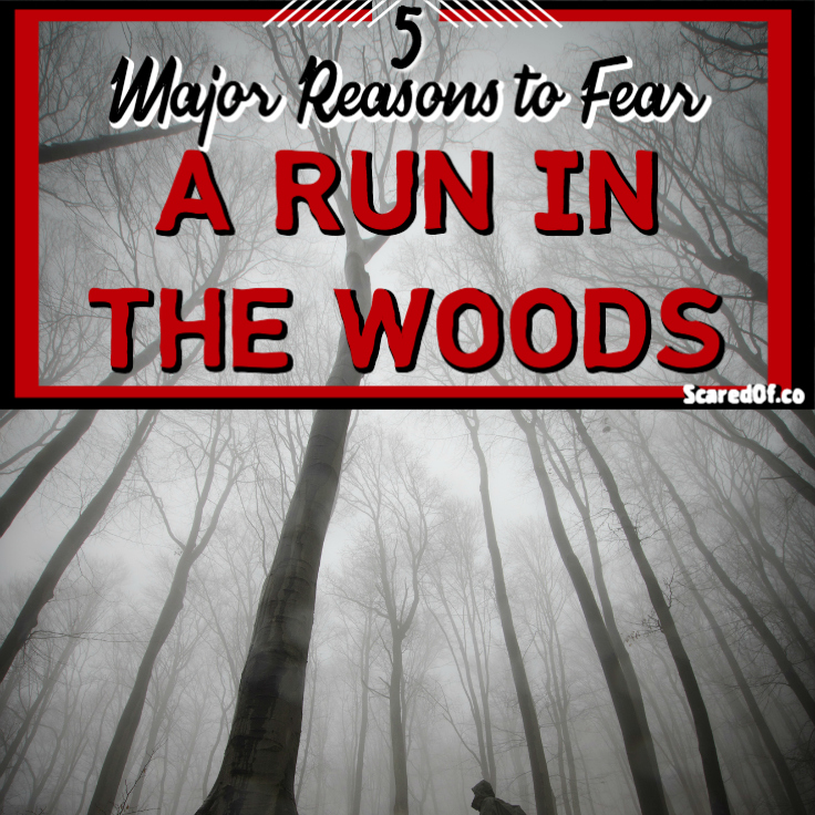 5 Major Reasons to Fear a Run in the Woods