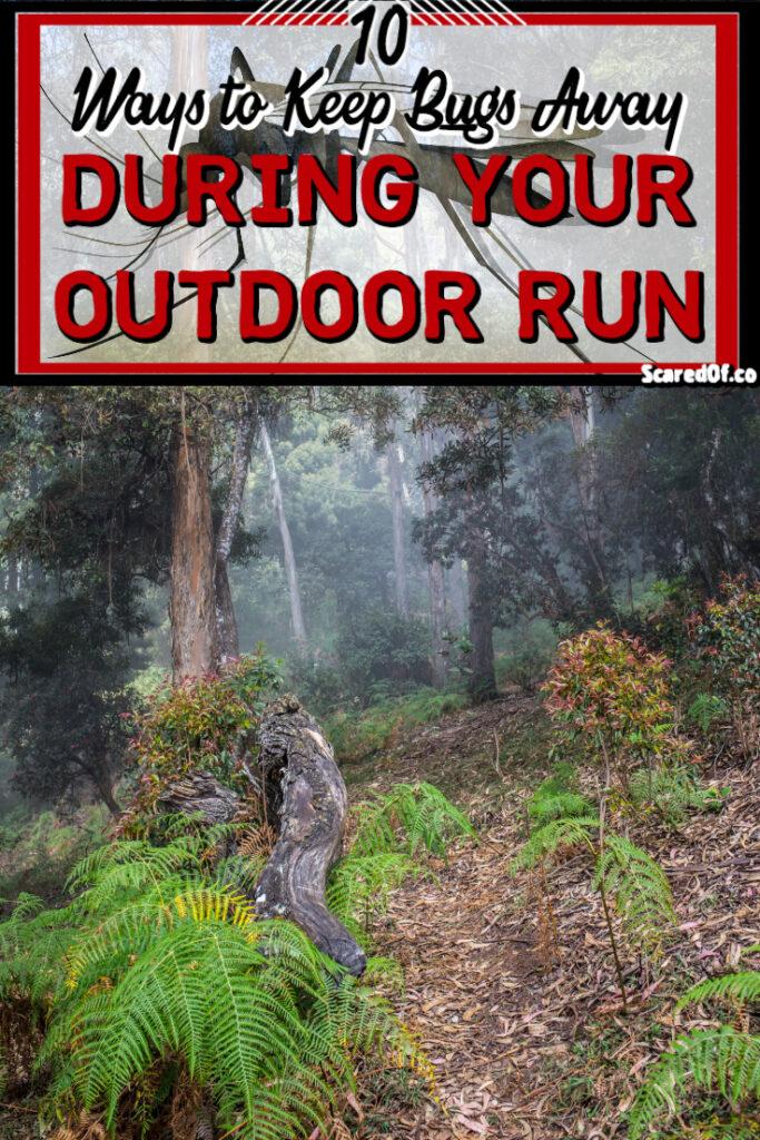 10 Ways to Keep Bugs Away During an Outdoor Run